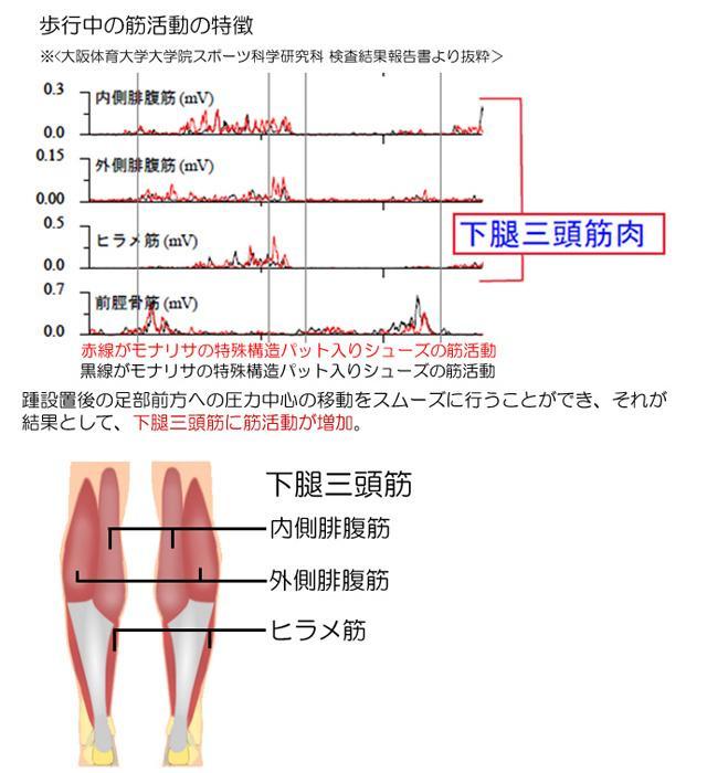 モナリサパンプスの筋活動に与える影響<歩行時>